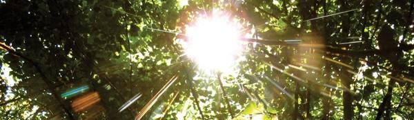 erneuerbare Energie bei Naturstrom
