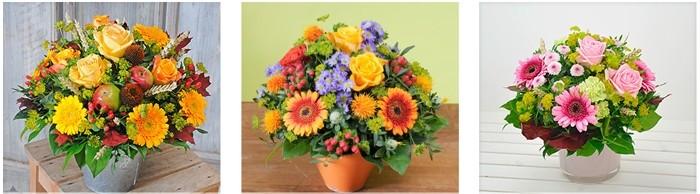 Blumen von Blume2000